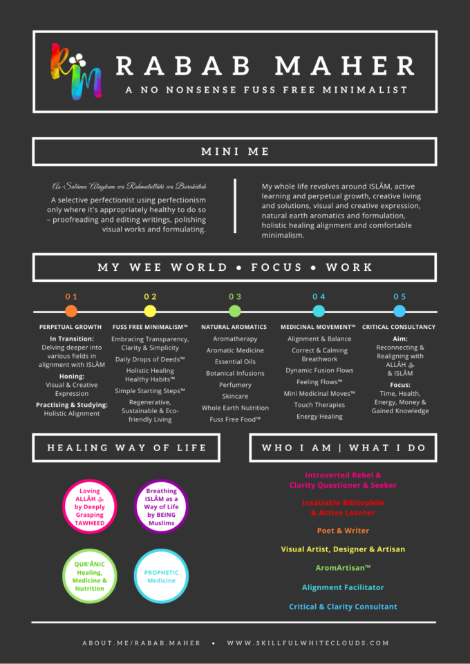 Infographic Rainbow Resume Rabab Maher Updated